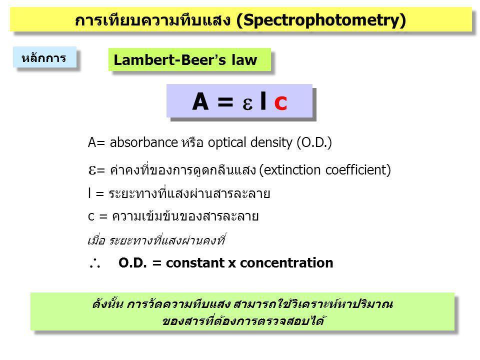 A = e l c = ค่าคงที่ของการดูดกลืนแสง (extinction coefficient)