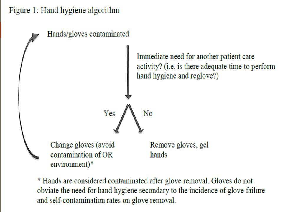This's hand hygiene algorithm