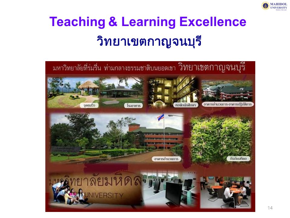 Teaching & Learning Excellence
