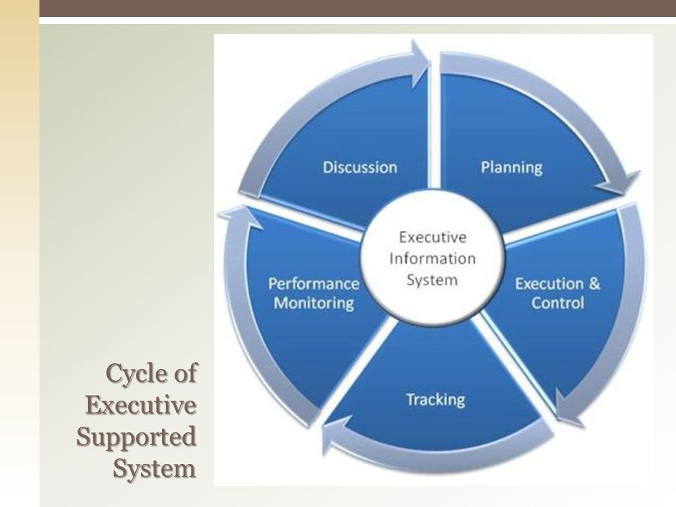 Cycle of Executive Supported System