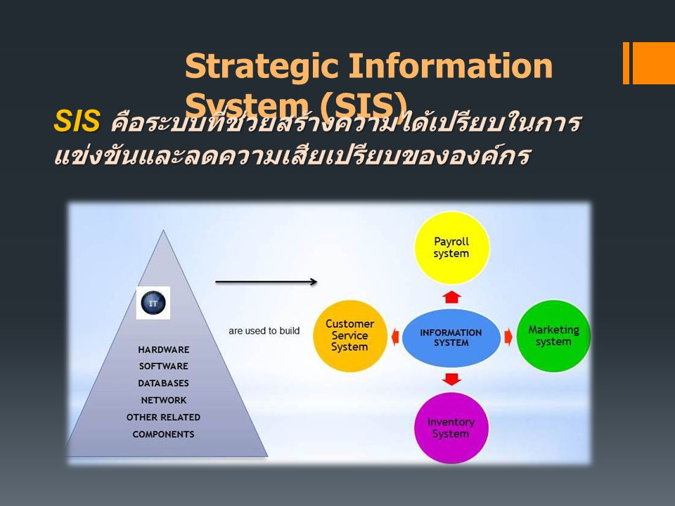 Strategic Information System (SIS)