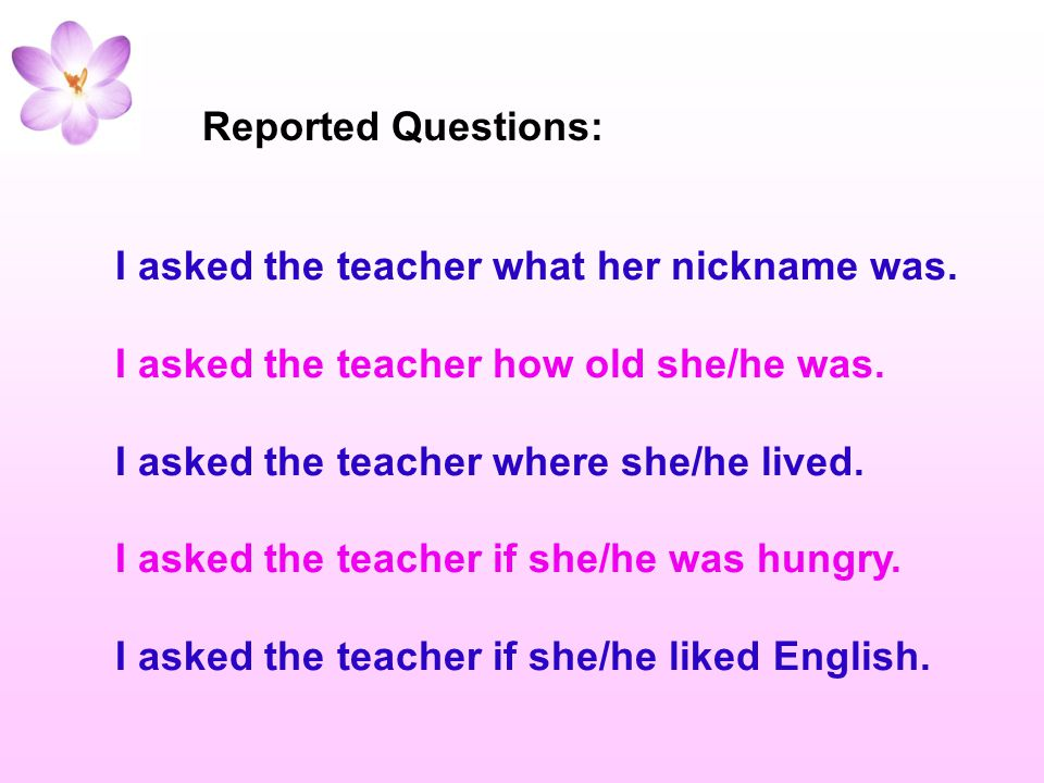 Reported Questions: I asked the teacher what her nickname was. I asked the teacher how old she/he was.