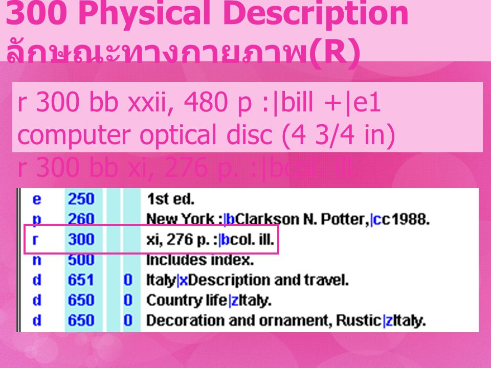 300 Physical Description ลักษณะทางกายภาพ(R)