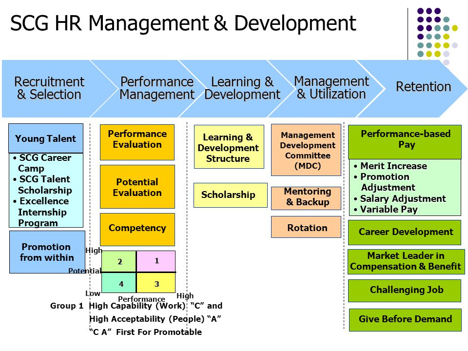 SCG HR Management & Development