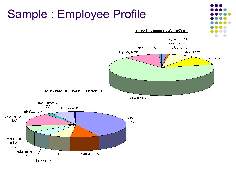 Sample : Employee Profile