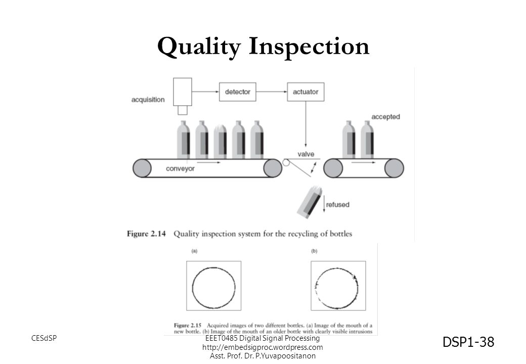 Quality Inspection CESdSP