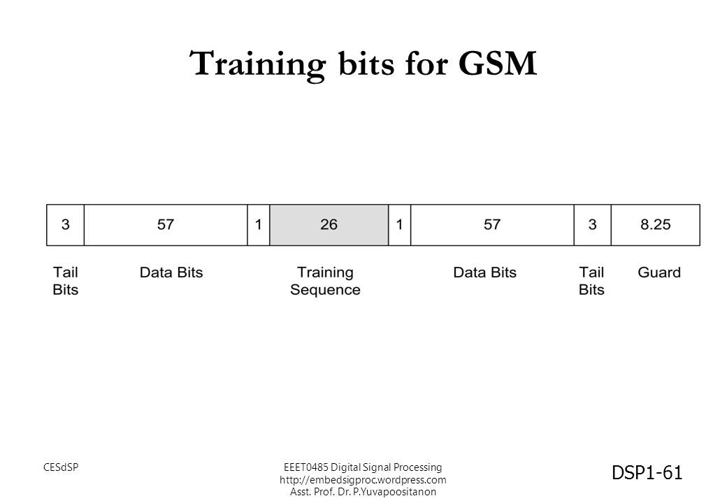 Training bits for GSM CESdSP