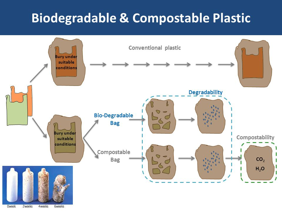 the use of biodegradable plastics essay A simple explanation of bioplastics and biodegradable plastics, their benefits for the environment and drawbacks.