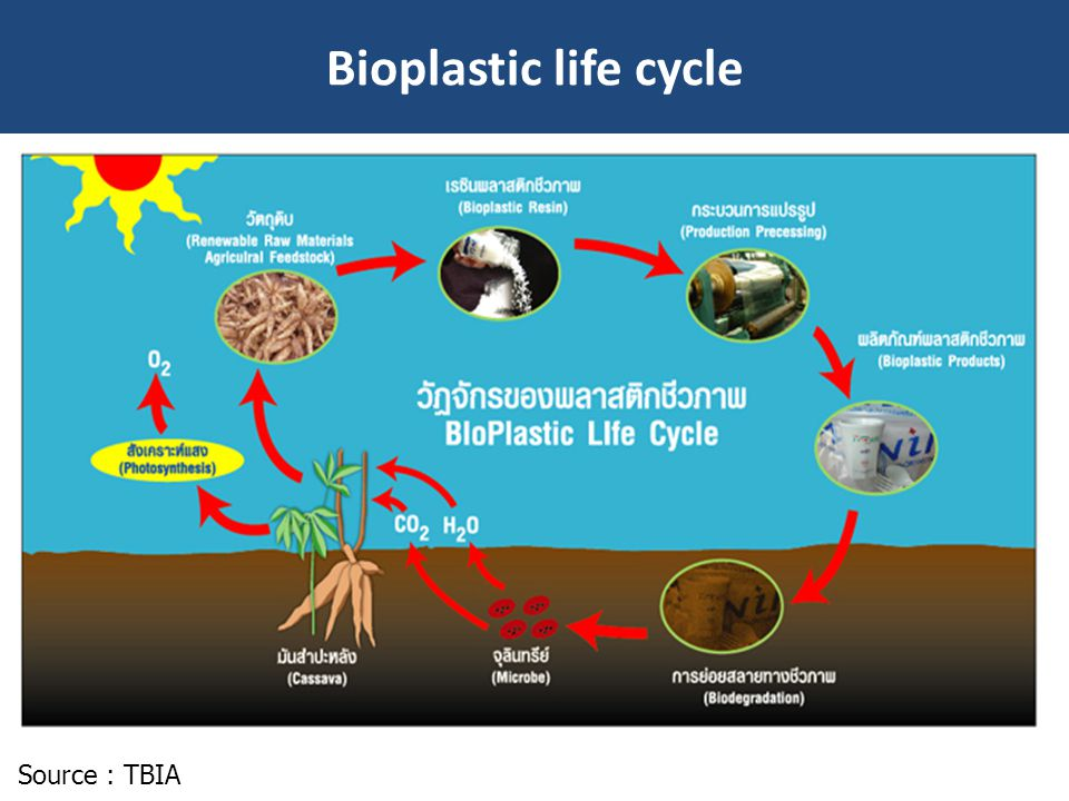 Bioplastic life cycle Source : TBIA