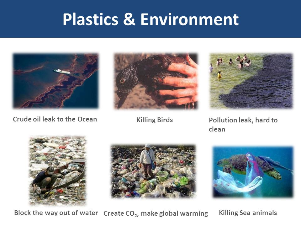 Plastics & Environment