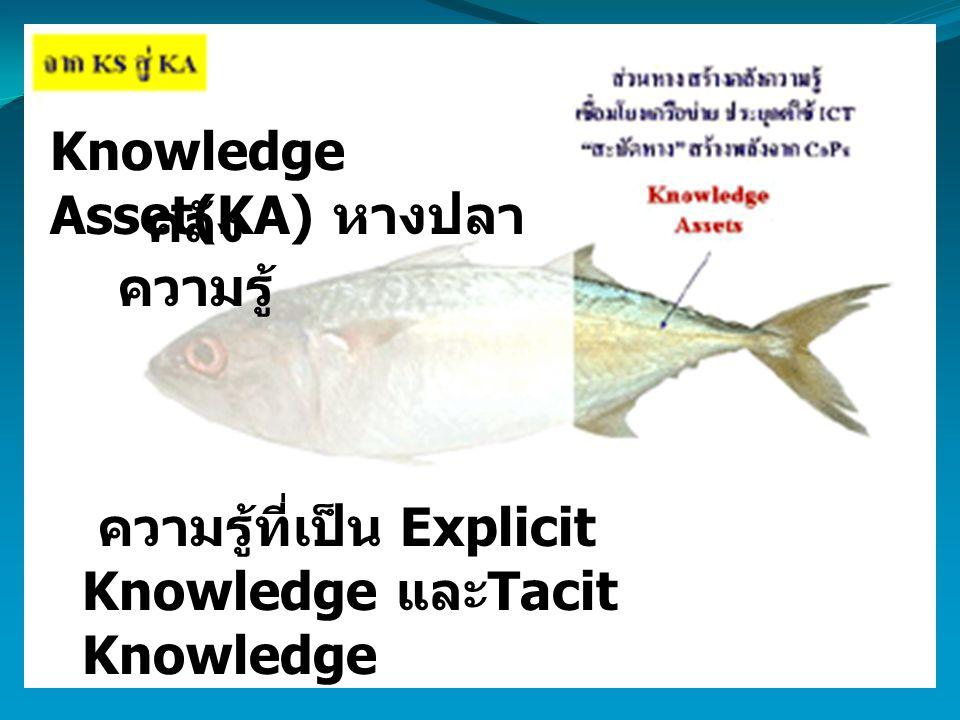 Knowledge Asset(KA) หางปลา