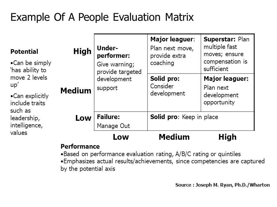 Example Of A People Evaluation Matrix
