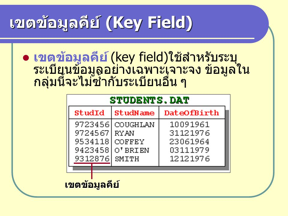 เขตข้อมูลคีย์ (Key Field)