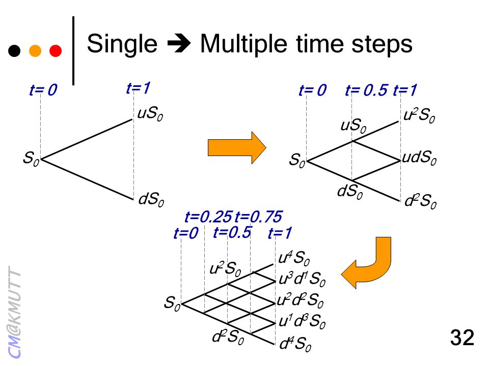 Single  Multiple time steps