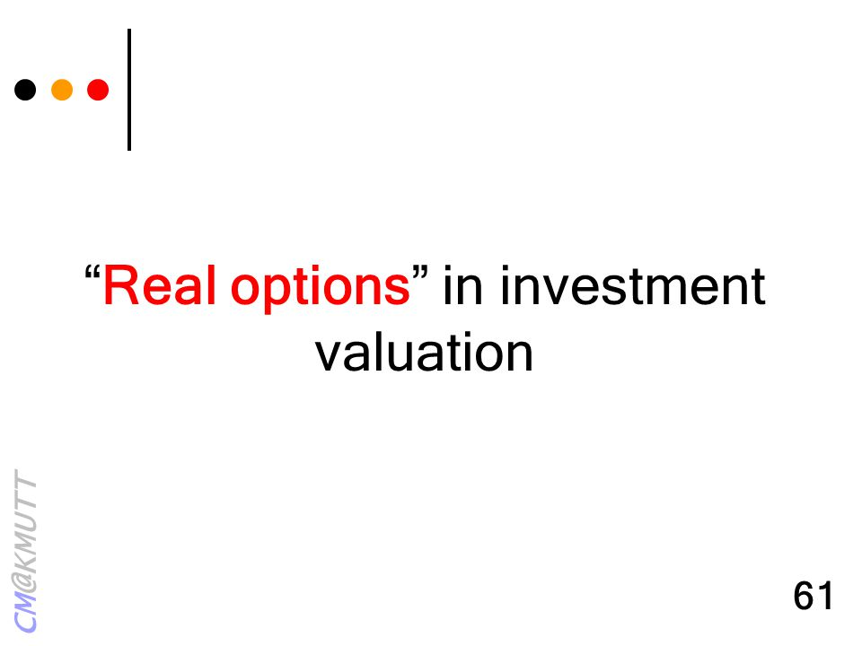 Real options in investment valuation