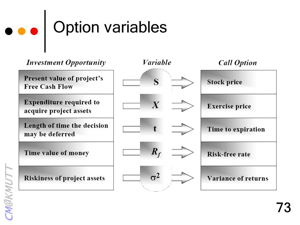 Option variables