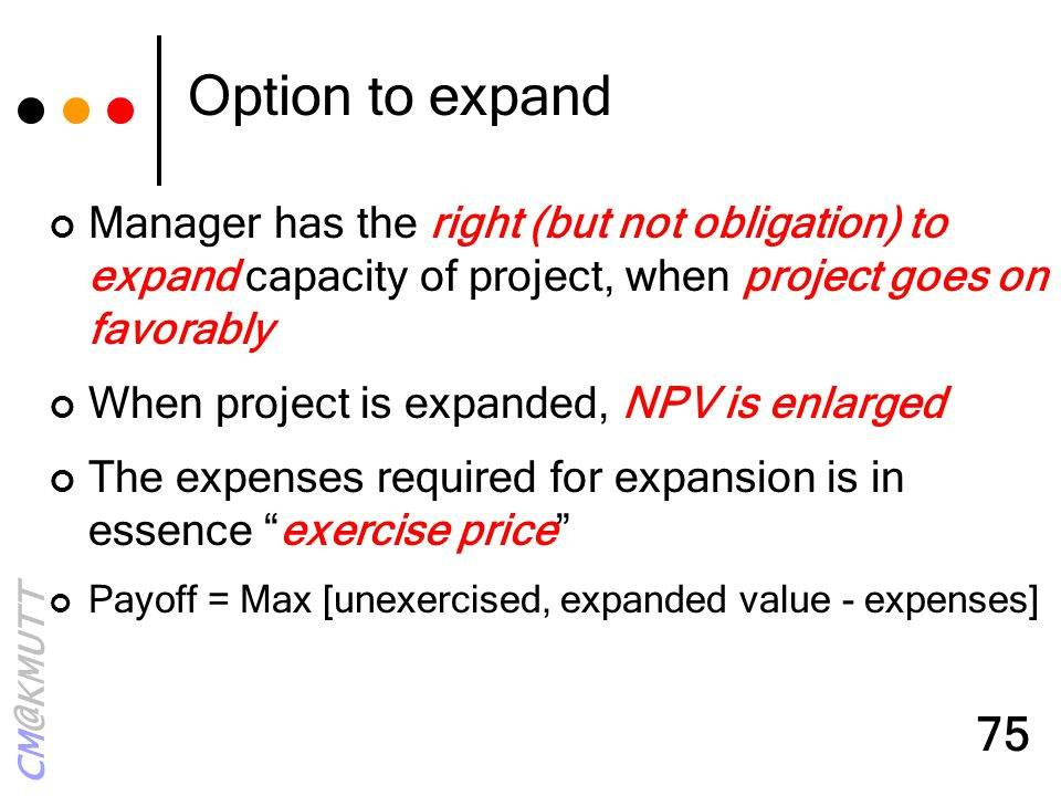 Option to expand Manager has the right (but not obligation) to expand capacity of project, when project goes on favorably.