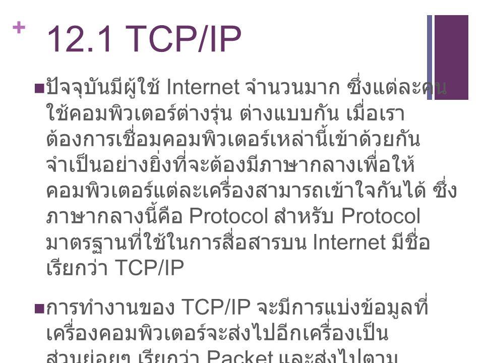 12.1 TCP/IP