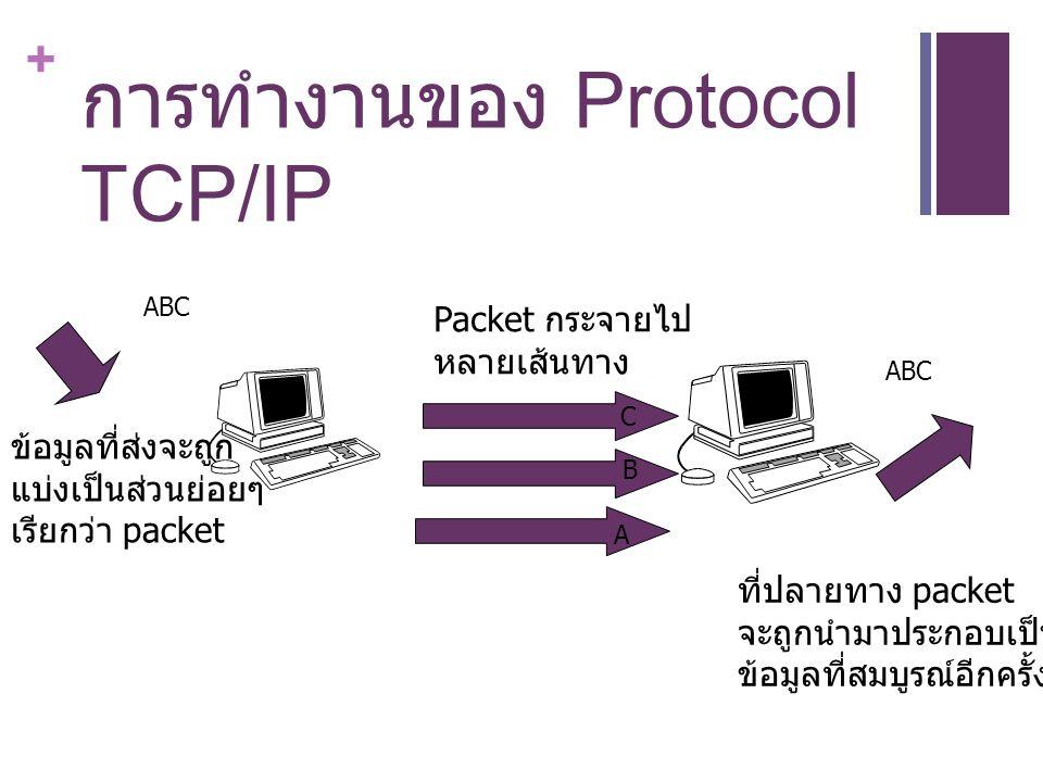 การทำงานของ Protocol TCP/IP