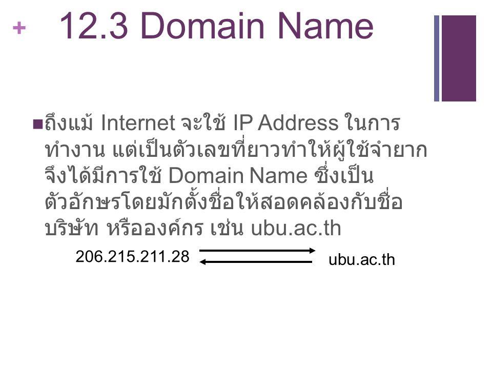 12.3 Domain Name