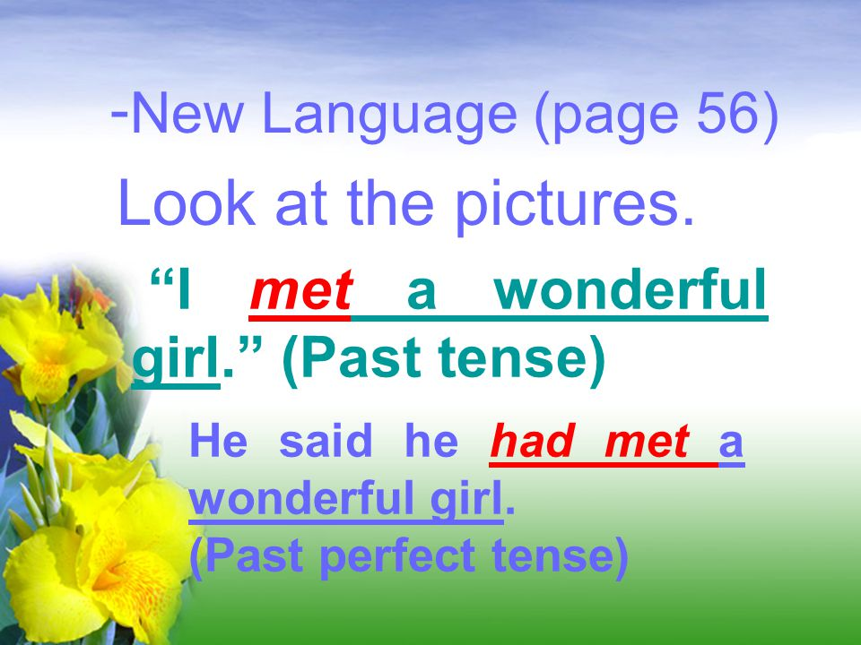 Look at the pictures. New Language (page 56)