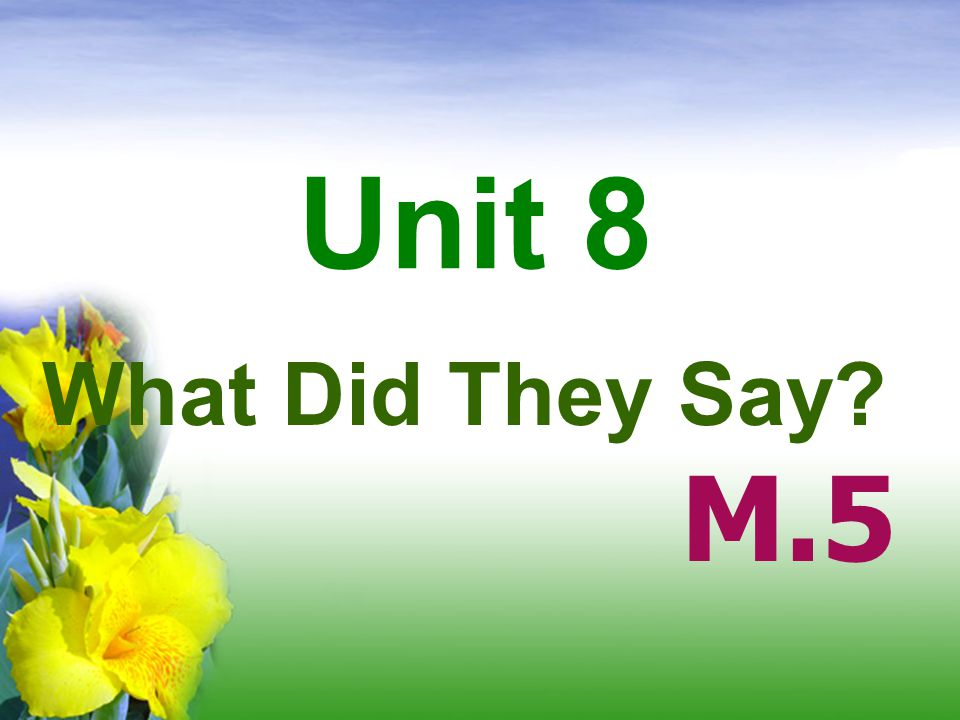 Unit 8 What Did They Say M.5