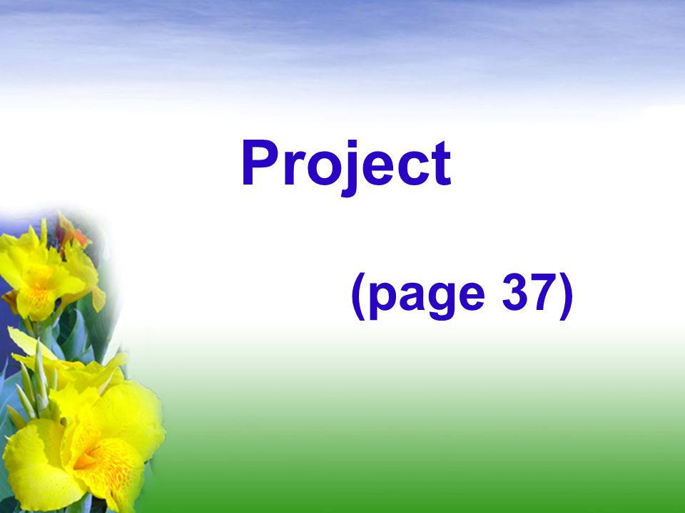 Project (page 37)