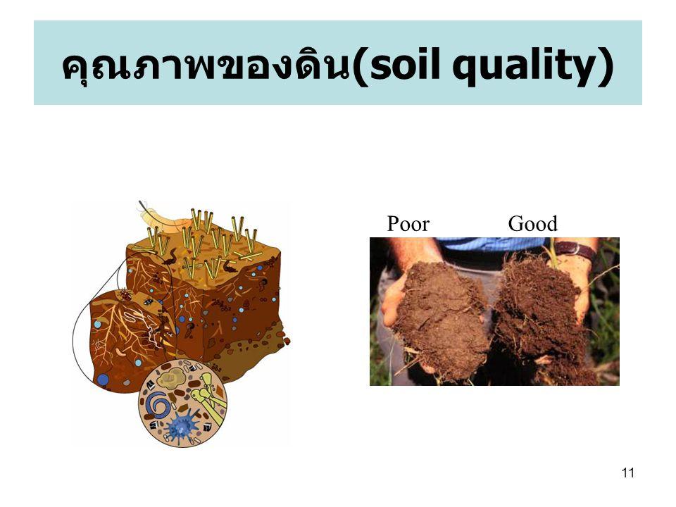 คุณภาพของดิน(soil quality)