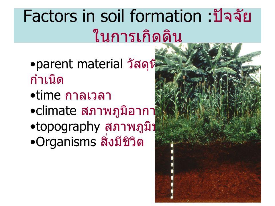 Factors in soil formation :ปัจจัยในการเกิดดิน