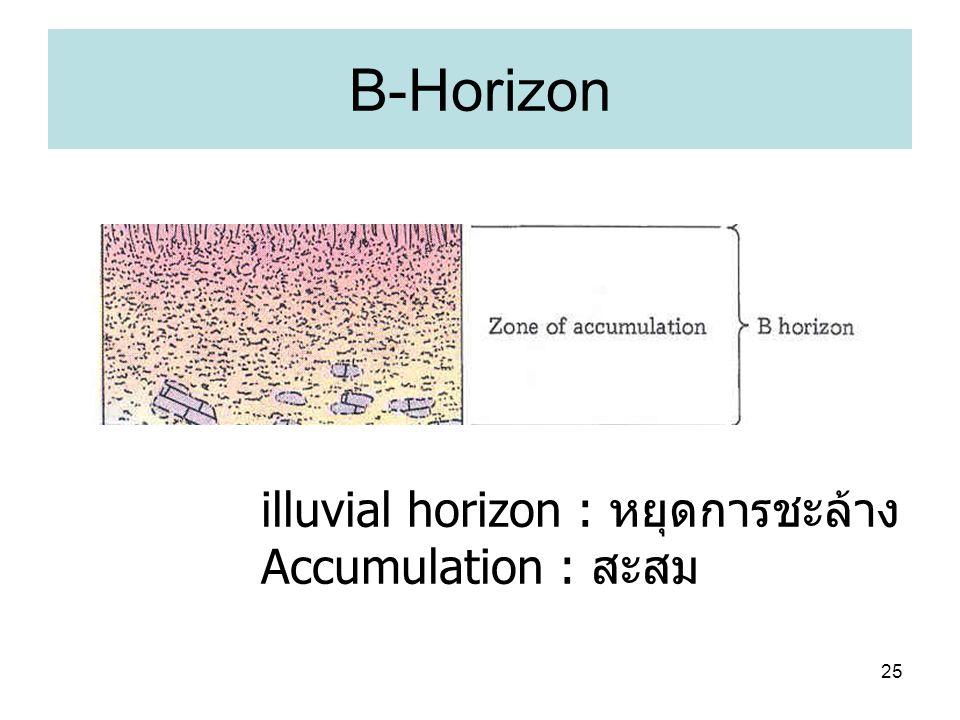 B-Horizon illuvial horizon : หยุดการชะล้าง Accumulation : สะสม