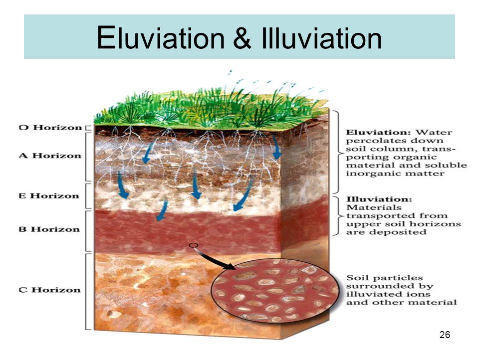 Eluviation & Illuviation