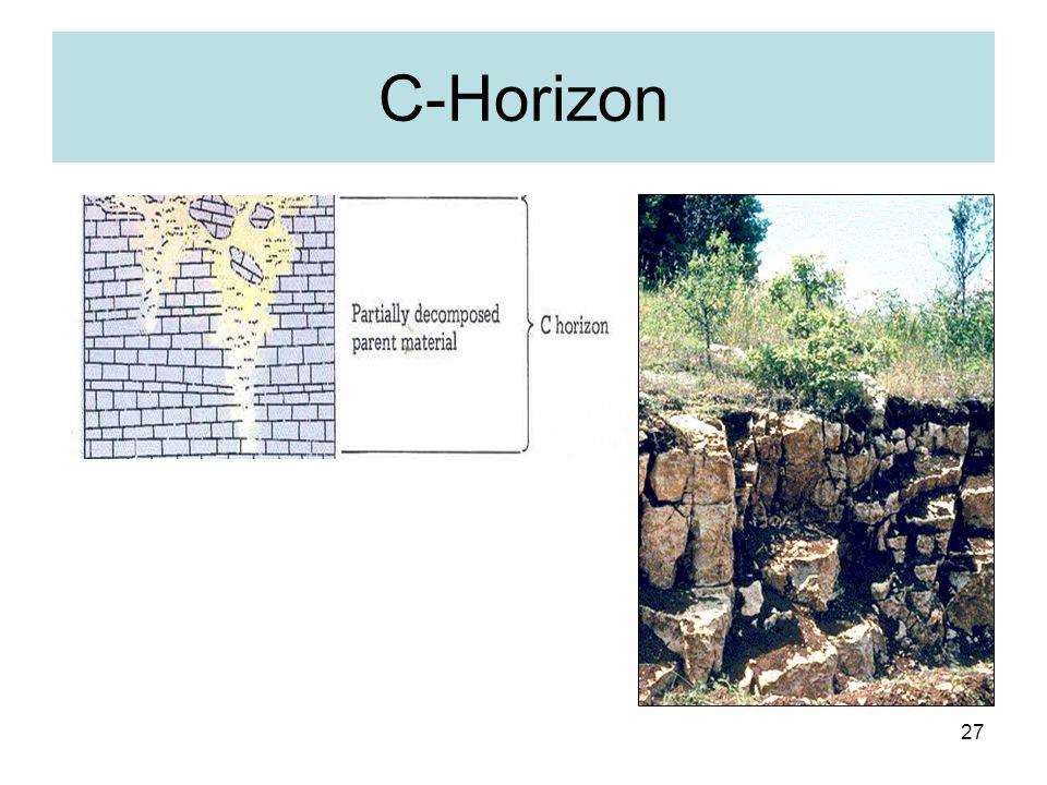 C-Horizon