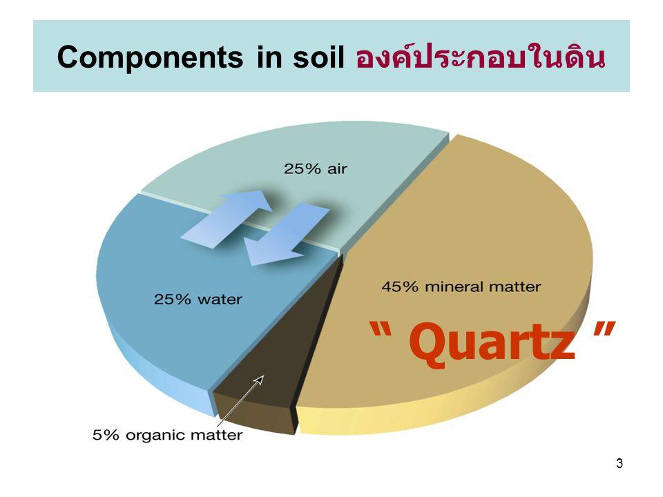 Components in soil องค์ประกอบในดิน