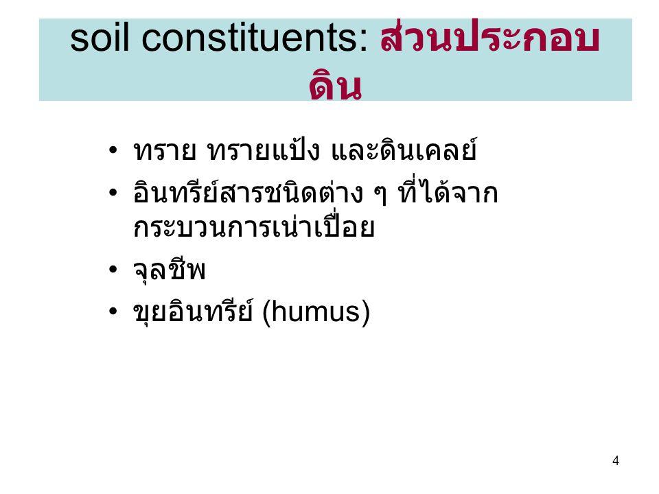 soil constituents: ส่วนประกอบดิน
