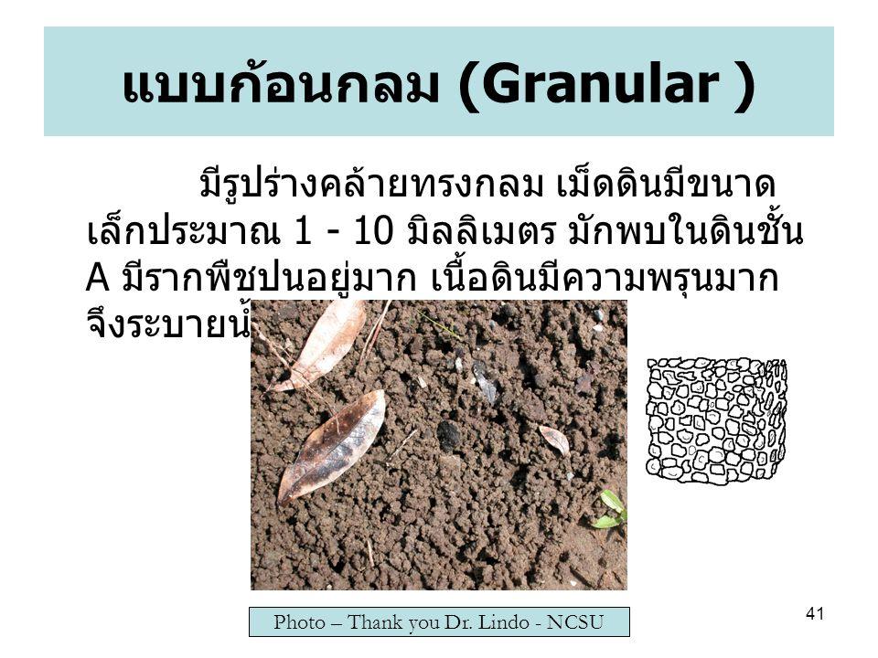 แบบก้อนกลม (Granular )