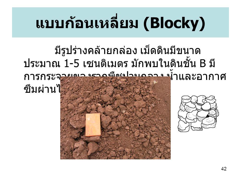 แบบก้อนเหลี่ยม (Blocky)