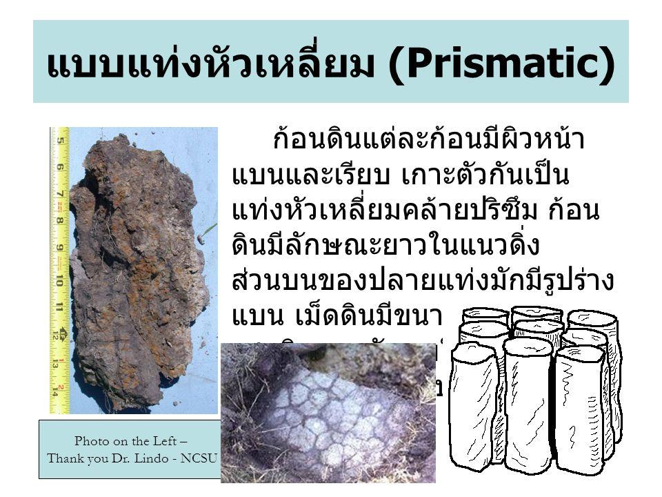 แบบแท่งหัวเหลี่ยม (Prismatic)