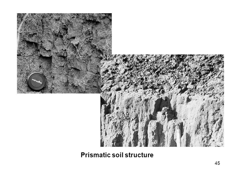 Prismatic soil structure