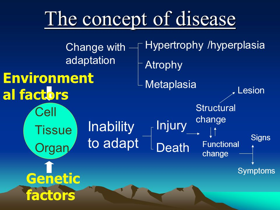 The concept of disease Environmental factors Inability to adapt