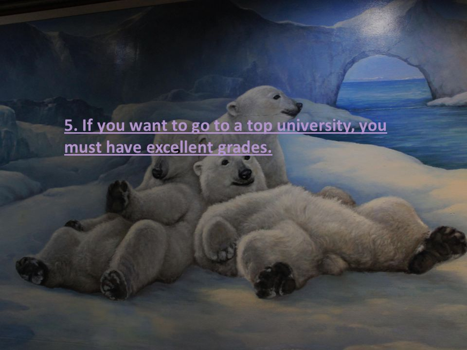 5. If you want to go to a top university, you must have excellent grades.