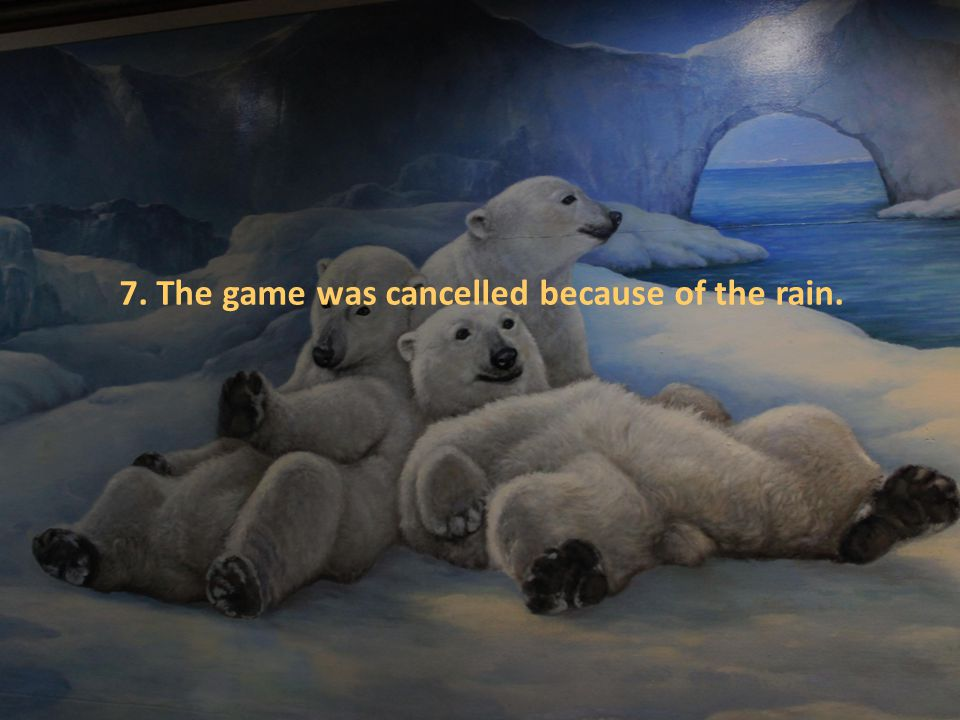 7. The game was cancelled because of the rain.