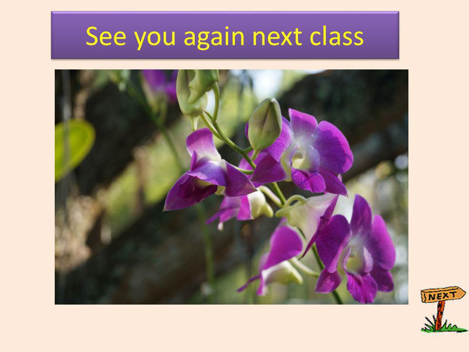 See you again next class