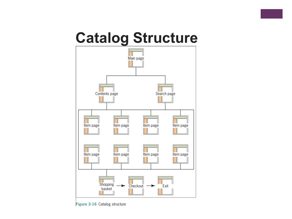 Catalog Structure