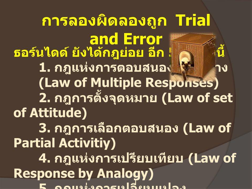 การลองผิดลองถูก Trial and Error