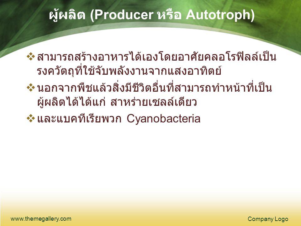 ผู้ผลิต (Producer หรือ Autotroph)