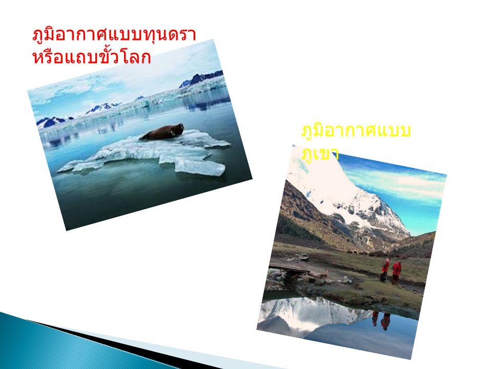 ภูมิอากาศแบบทุนดรา หรือแถบขั้วโลก