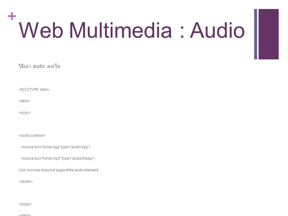 Web Multimedia : Audio วิธีเอา audio ลงเว็บ <!DOCTYPE html>