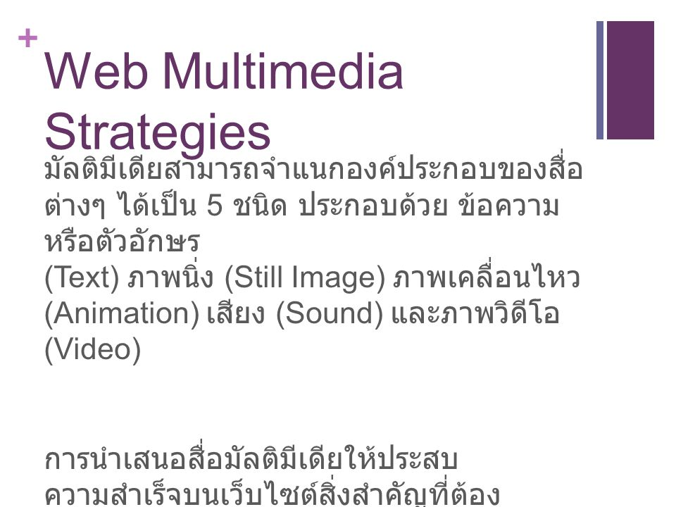 Web Multimedia Strategies