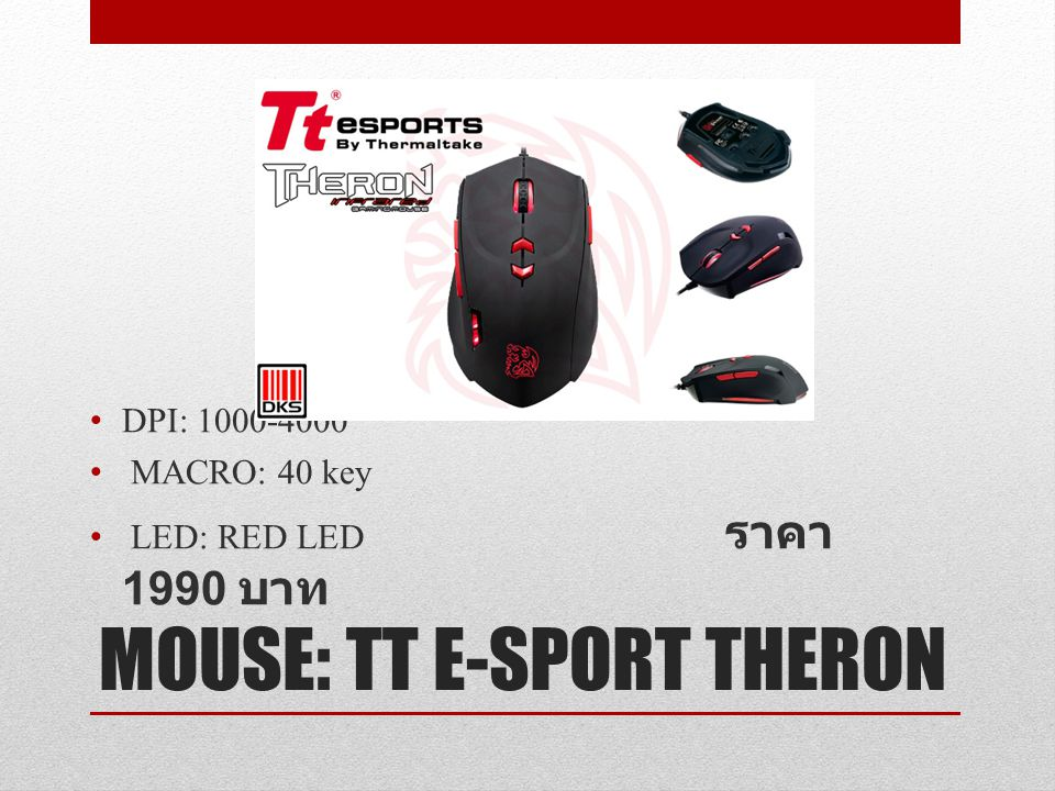 MOUSE: TT E-SPORT THERON