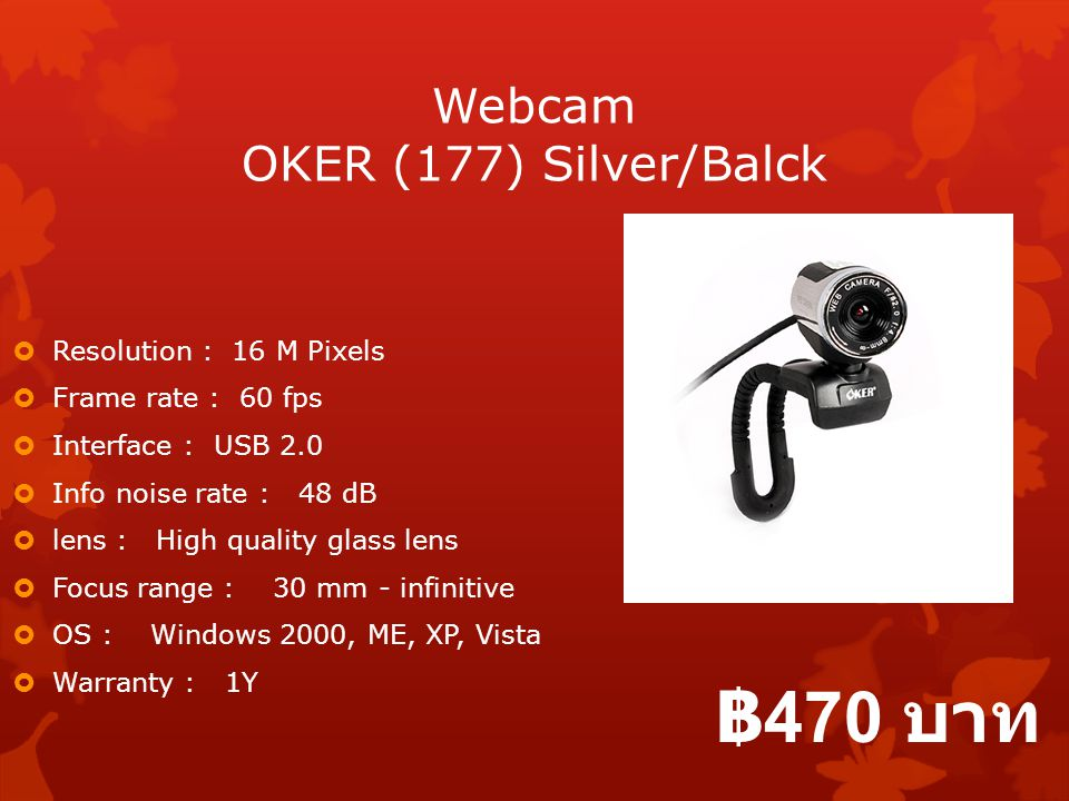 Webcam OKER (177) Silver/Balck